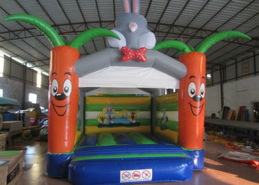 China Bounce House With Slide 0.55mm Pvc Tarpaulin , Indoor Inflatable Bounce House supplier