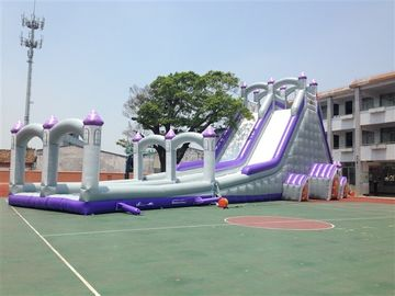 Big 12 People Tarpaulin 0.55mm Commercial Inflatable Water Slides